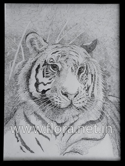 Tiger - Ink Art