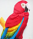 Cloth work - Parrot